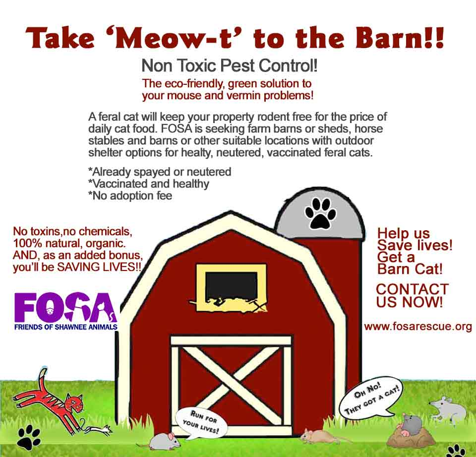 TNR-Barn Program - Friends of Roswell Animals